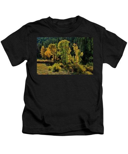Morning Cottonwoods Kids T-Shirt