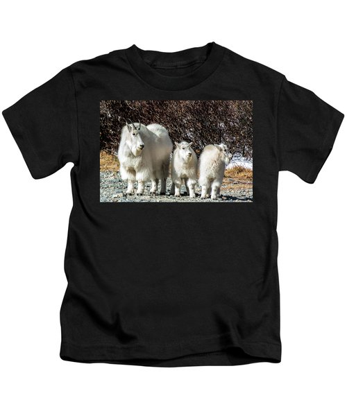 Mountain Goat Mom And Kids Kids T-Shirt