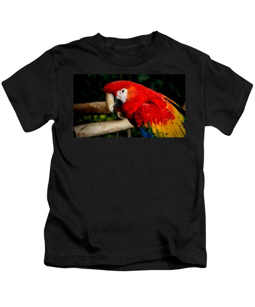 Mr Colorful  Kids T-Shirt