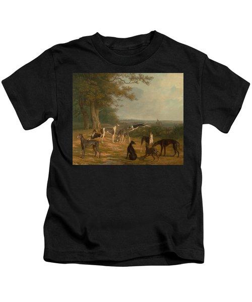 Nine Greyhounds In A Landscape Kids T-Shirt