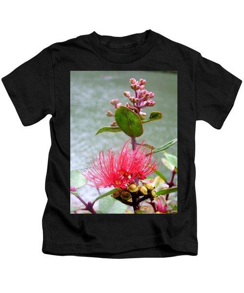 Nz Pohutukawa Buds  Kids T-Shirt