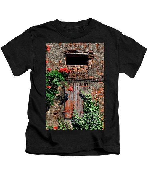 Old Farm Window Kids T-Shirt