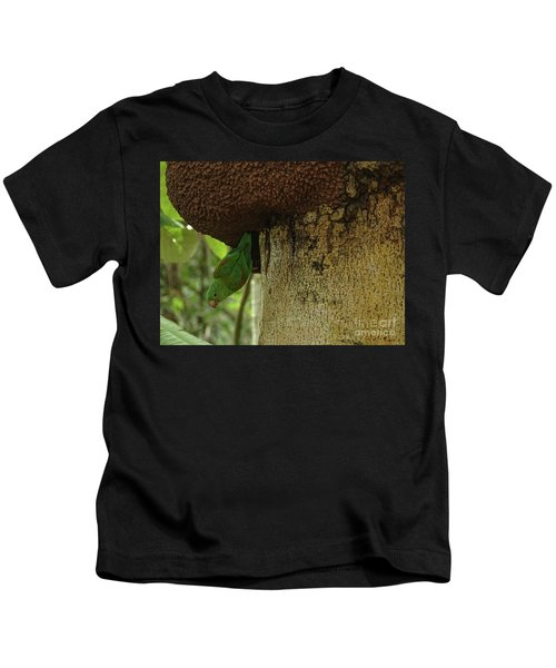 Orange -chinned Parakeet  On A Termite Mound Kids T-Shirt