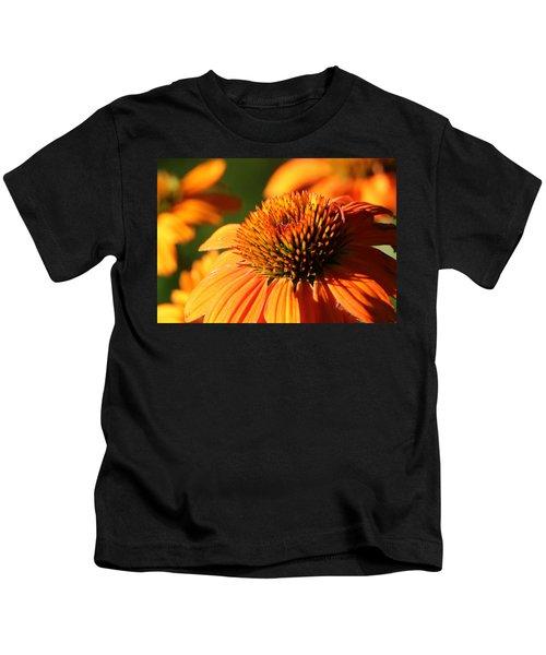 Orange Coneflower At First Light Kids T-Shirt