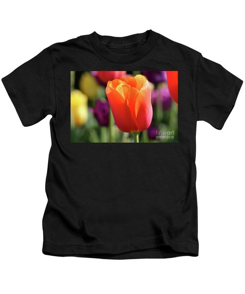 Orange Tulip In Franklin Park Kids T-Shirt