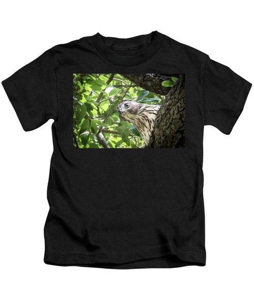 Red-shouldered Hawk Fledgling - 5 Kids T-Shirt