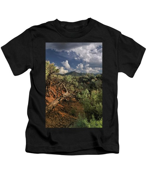 Out On The Mesa 2 Kids T-Shirt