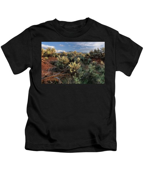 Out On The Mesa 7 Kids T-Shirt