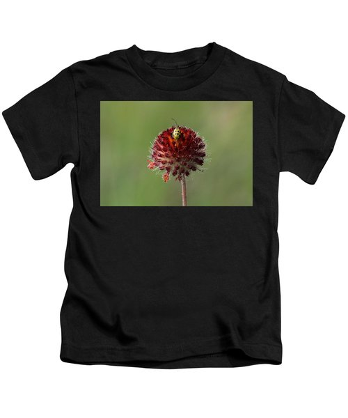 Over The Top Kids T-Shirt
