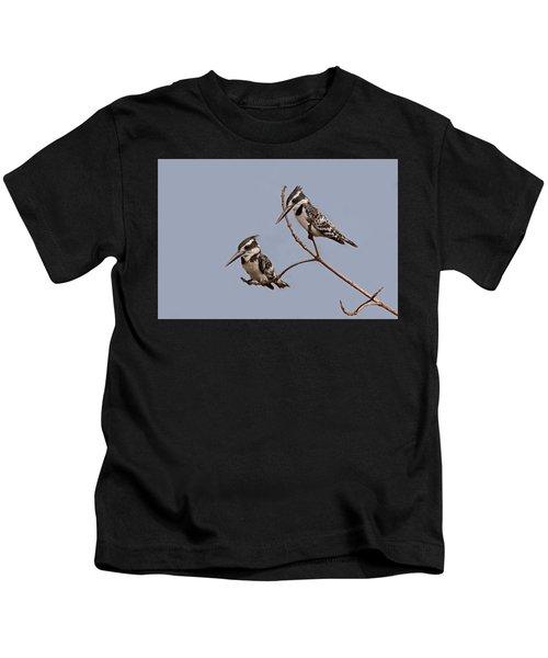 Pied Kingfisher Pair Kids T-Shirt