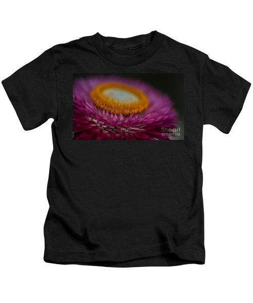 Pink And Yellow Strawflower Close-up Kids T-Shirt