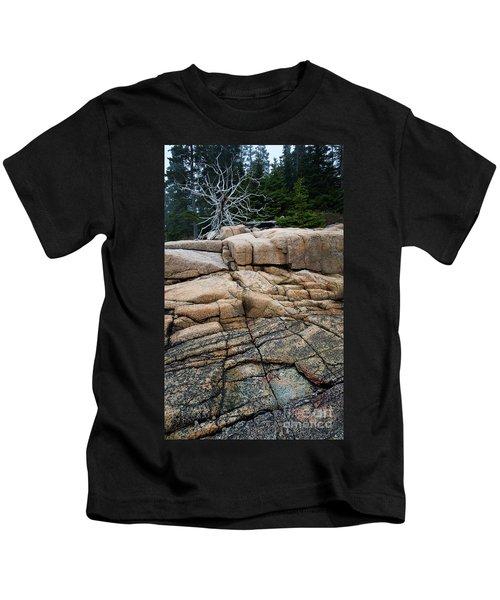 Pink Granite And Driftwood At Schoodic Peninsula In Maine  -4672 Kids T-Shirt