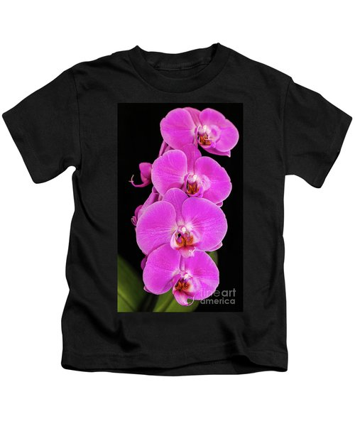 Pink Orchid Against A Black Background Kids T-Shirt
