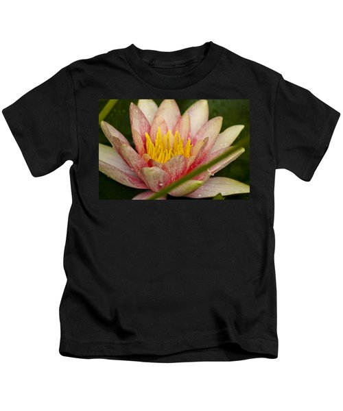 Pink Water Lilly Kids T-Shirt