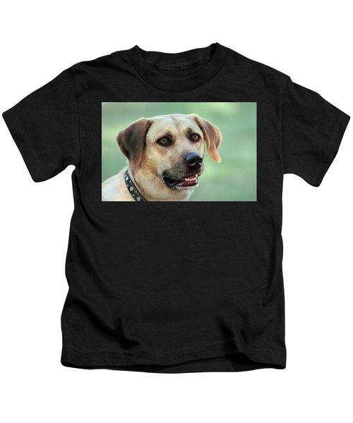 Portrait Of A Yellow Labrador Retriever Kids T-Shirt