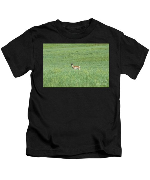 Pronghorn In A Sea Of Green Kids T-Shirt