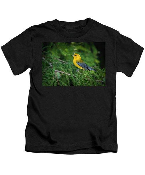 Prothonatory Warbler 9809 Kids T-Shirt