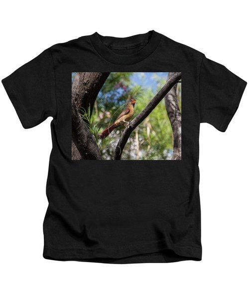 Pyrrhuloxia At Work Kids T-Shirt