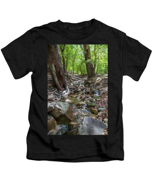 Ramsey Canyon Preserve Kids T-Shirt