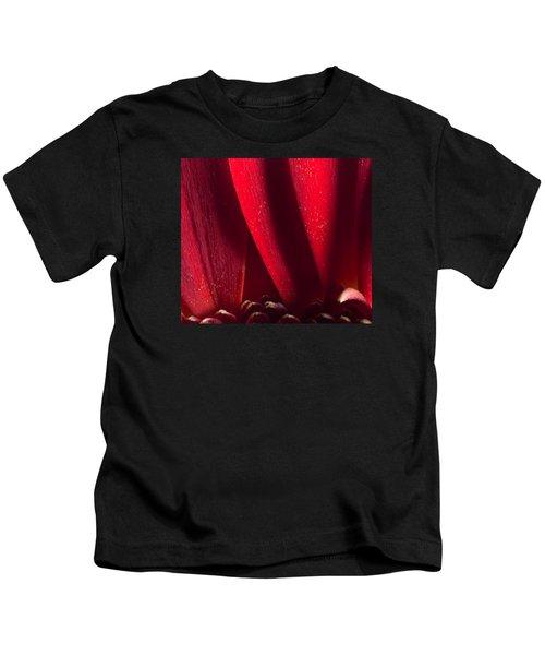 Golden Pollen Red Chrysanthemum Kids T-Shirt