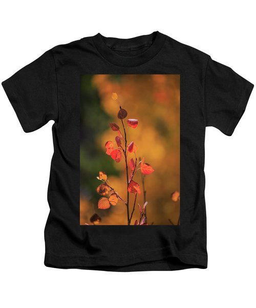 Red And Gold Kids T-Shirt