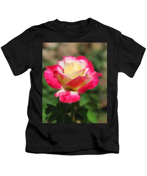Red And Yellow Rose Kids T-Shirt