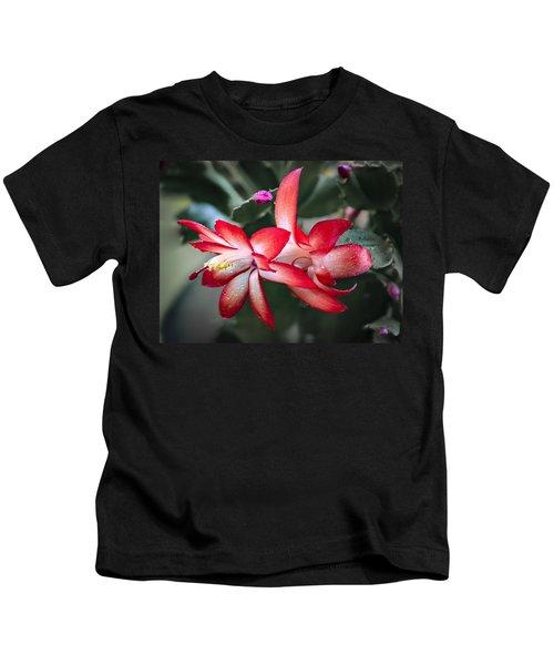 Red Christmas Cactus Kids T-Shirt