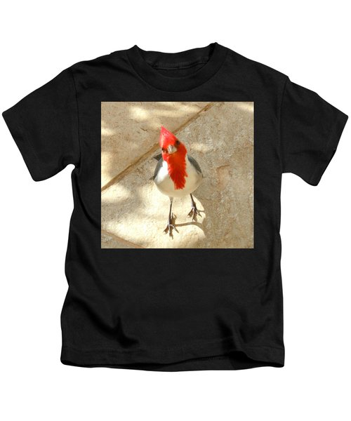 Red-crested Cardinal At My Feet Kids T-Shirt