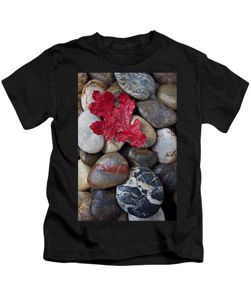 Red Leaf Wet Stones Kids T-Shirt