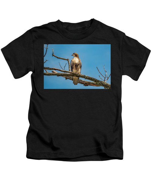 Red Tail Hawk Perched Kids T-Shirt
