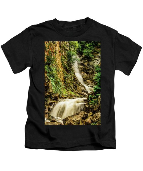 Reid Falls Kids T-Shirt