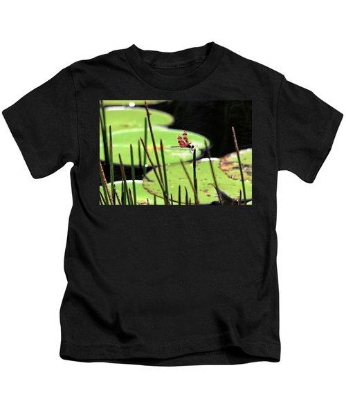 Resting Dragonfly Kids T-Shirt