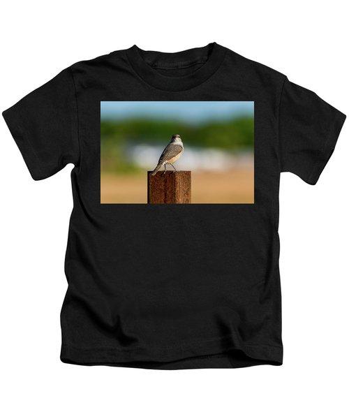 Rock Wren 1 Kids T-Shirt
