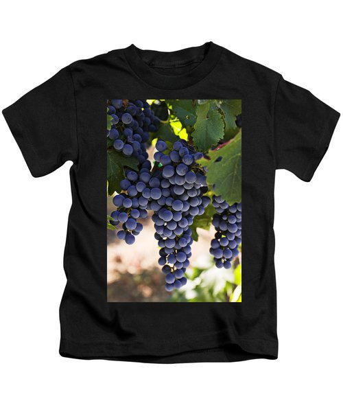 Sauvignon Grapes Kids T-Shirt