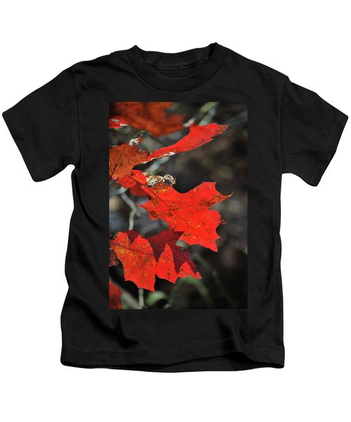 Scarlet Autumn Kids T-Shirt