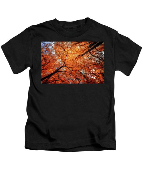 Sky Roots In Forest Red Kids T-Shirt
