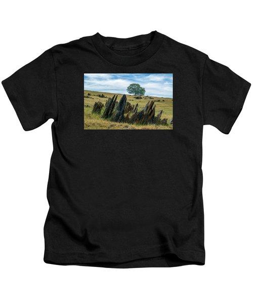 Slate Filled Meadow Kids T-Shirt