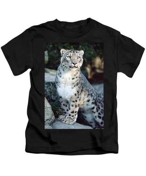 Snow Leopard Uncia Uncia Portrait Kids T-Shirt