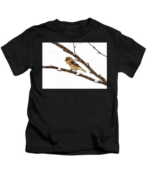 Snowy Day Goldfinch Kids T-Shirt