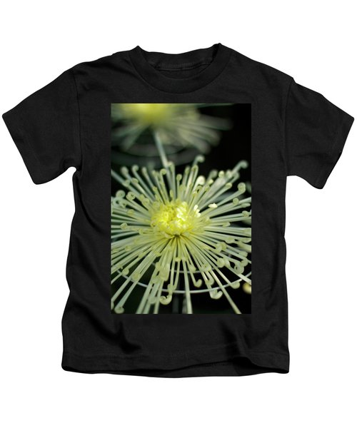 Spiral Chryanth Kids T-Shirt