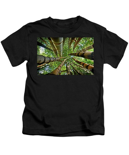 Stunning Bamboo Forest - Color Kids T-Shirt