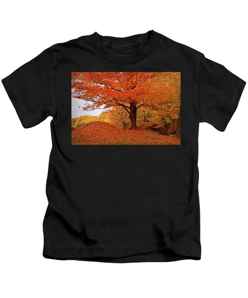 Sturdy Maple In Autumn Orange Kids T-Shirt
