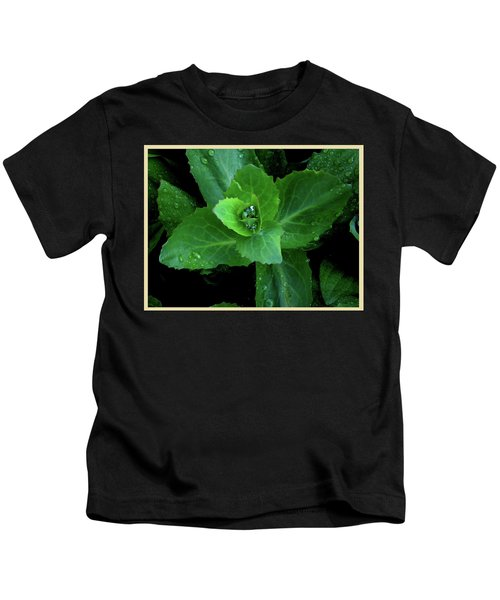 Succulent After The Rain  Kids T-Shirt