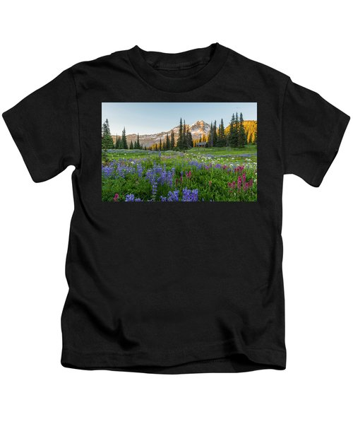 Summer Beauty At Indian Henry's Hunting Ground Kids T-Shirt