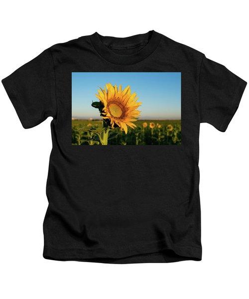Sunflowers At Sunrise 2 Kids T-Shirt