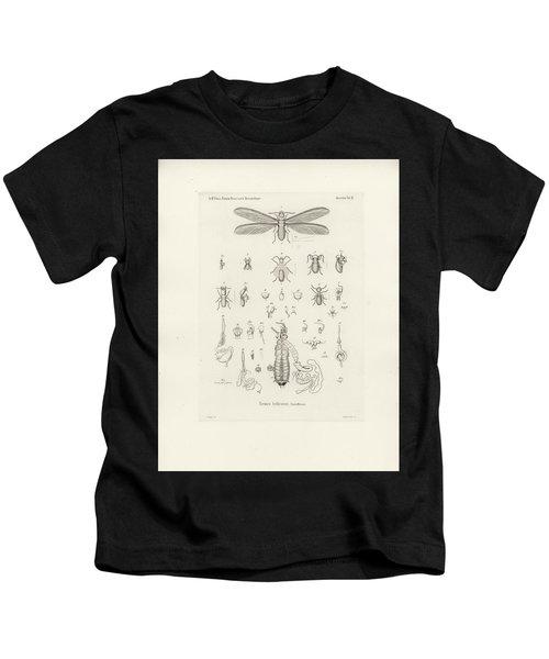 Termites, Macrotermes Bellicosus Kids T-Shirt