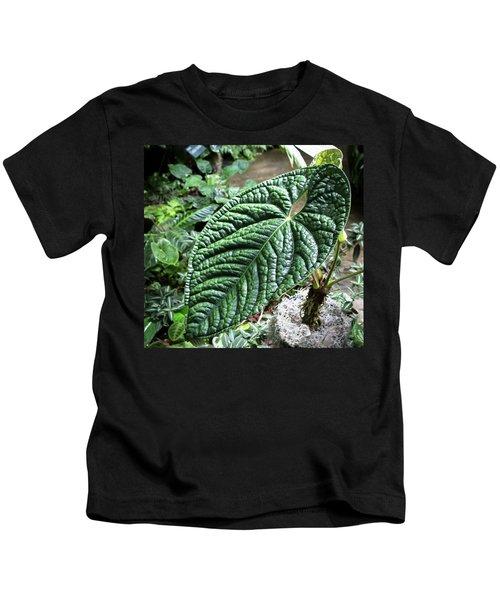 Texture Of A Leaf Kids T-Shirt