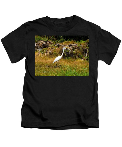 Egret Against Driftwood Kids T-Shirt