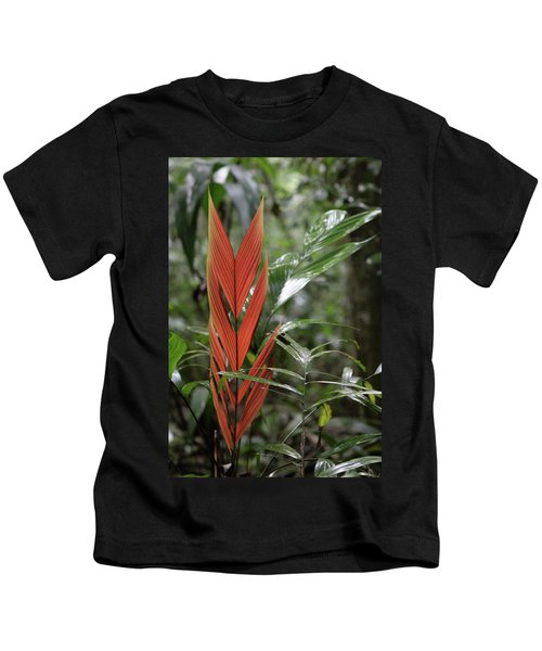 The Heart Of The Amazon Kids T-Shirt