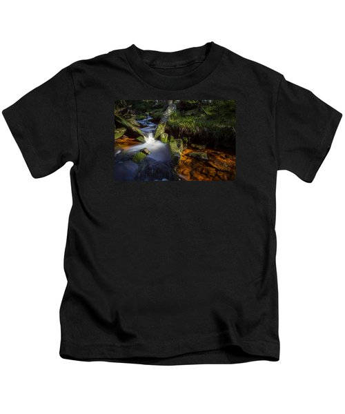 the Oder in the Harz National Park Kids T-Shirt